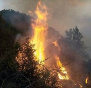2-killed-in-gulmi-fire-1-301x290